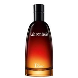 Perfume Fahrenheit - Dior - Masculino - Eau de Toilette - 100ml