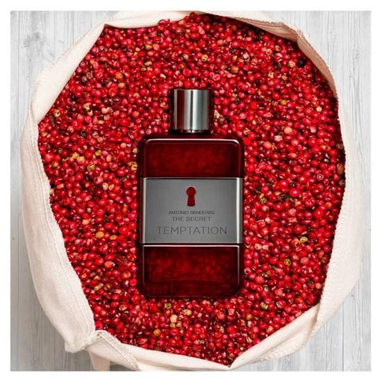 Perfume The Secret Temptation - Antonio Banderas - Masculino - Eau de Toilette - 100ml